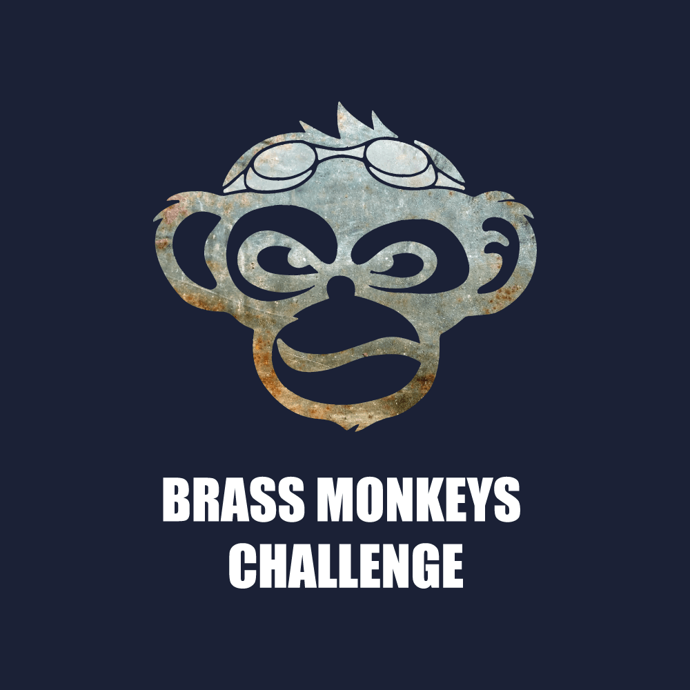 Brass Monkeys Challenge